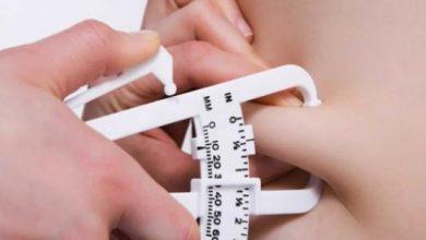 Photo of أفضل نظام غذائي لحرق الدهون