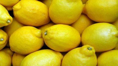 Photo of هل الليمون يرفع الضغط أو يخفضه؟