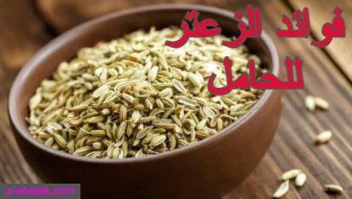 Photo of فوائد الزعتر للحامل