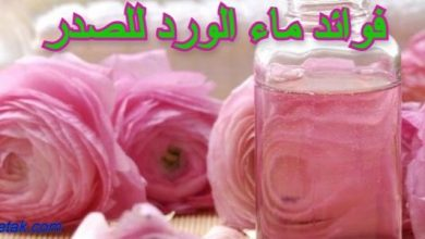 Photo of فوائد ماء الورد للصدر