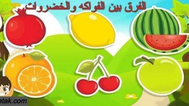 Photo of الفرق بين الفواكه والخضروات