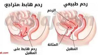 Photo of وصفات لتنظيف الرحم
