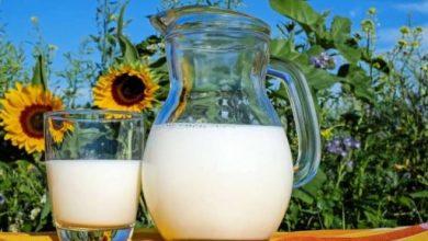 Photo of فوائد شرب الحليب قبل النوم